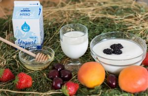 yogurt-bianco-magro